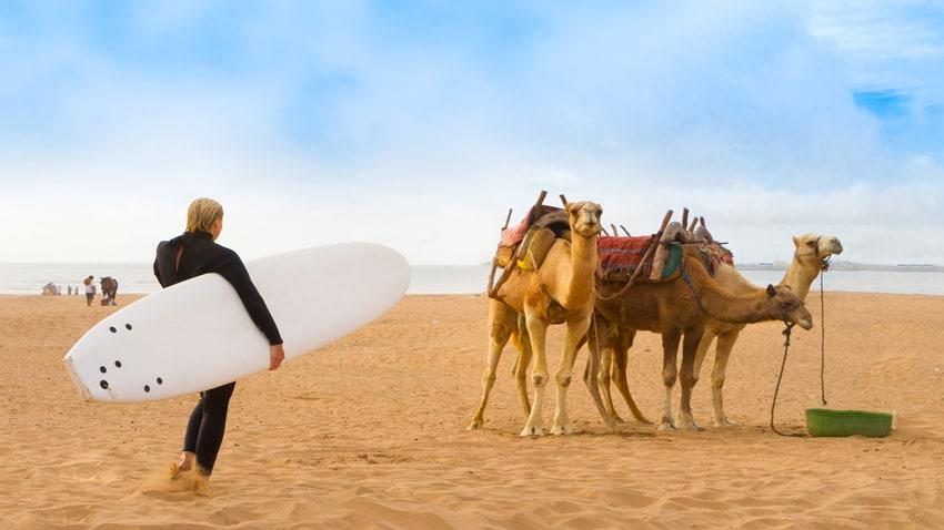 Beach of Essaouira, Morocco, Africa.
