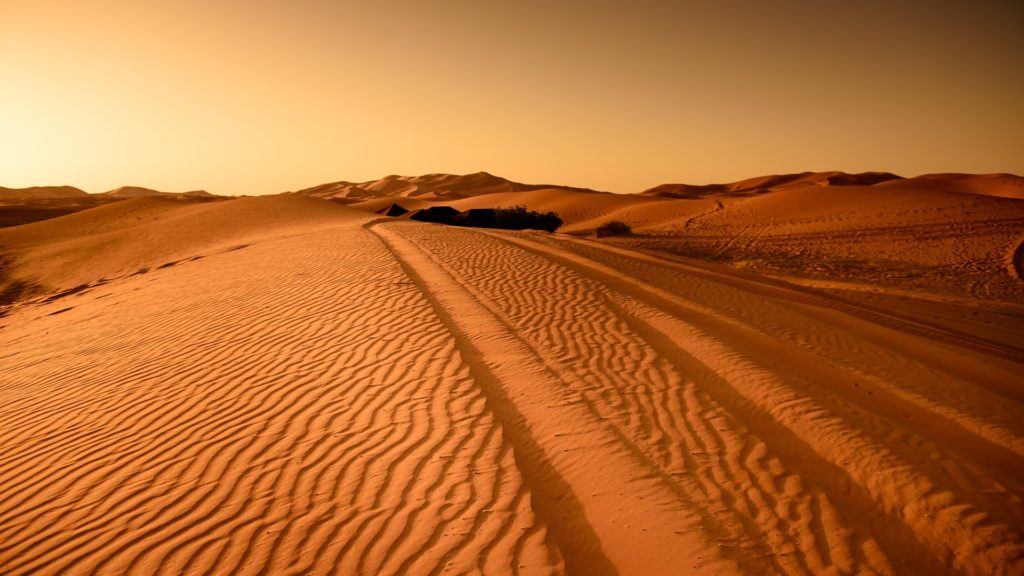 sahara-morocco
