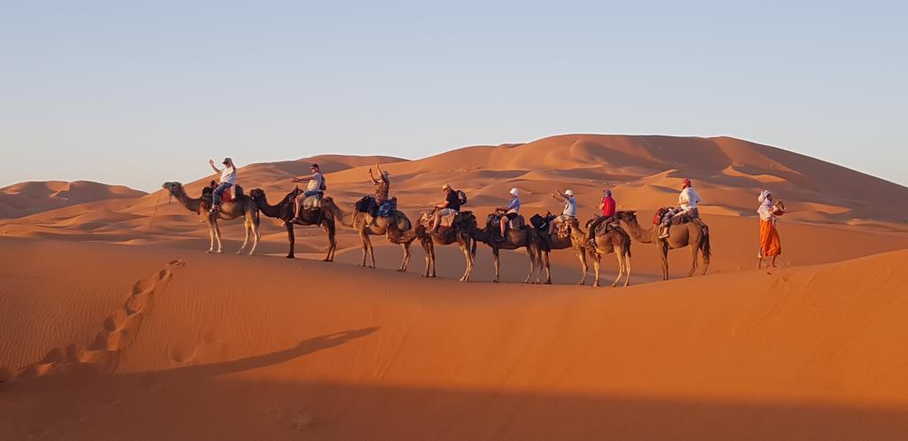 merzouga-camel