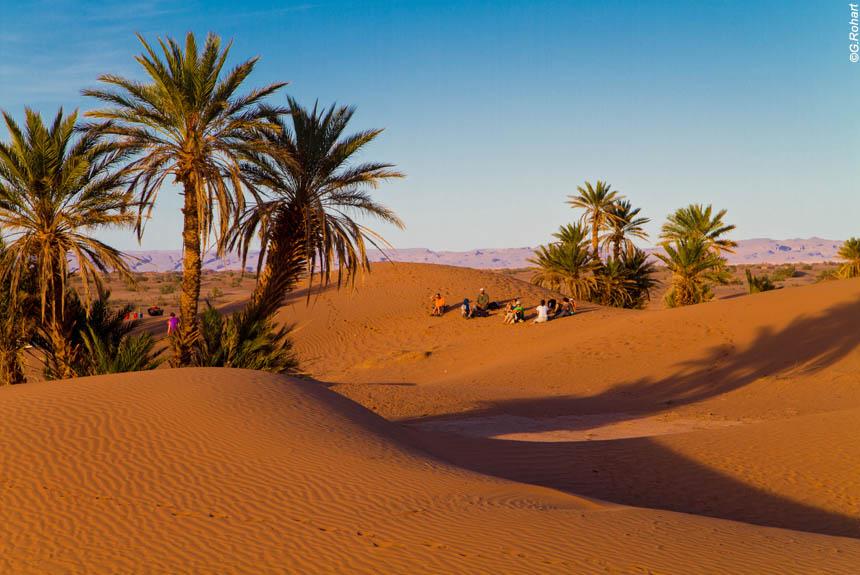 desert-massa-oasis